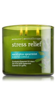 Eucalyptus Spearmint 3 Wick Candle