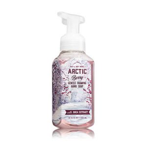ARCTIC BERRY Gentle Foaming Hand Soap